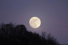 Blue Moon - Blauer Mond ( Vollmond ) über dem Kanton Graubünden - Grischun der Schweiz (chrchr_75) Tags: hurni christoph januar 2018 schweiz suisse switzerland svizzera suissa swiss chrchr chrchr75 chrigu chriguhurni chirguhurnibluemailch mond moon luna ムーン lune
