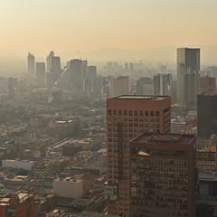 Mexico - Mexico City - view from Torre Latinoamericana (Harshil.Shah) Tags: mexico city mexicocity cdmx ciudad torre latinoamericana view skyscraper urban vista cityscape buildings