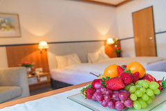 Happy_Stubai_Hotel_Hostel_Neustift_Stubai Valley_Tyrol_Austria_Room_02 (marketing deluxe) Tags: stubai neustift tyrol austria happystubai vintage chilling hostel food action glacier