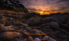 House on the Rocks (philipleemiller) Tags: landscape seascape sunset carmelbeach pacificcoast d800 california