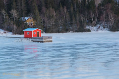 """ON FROZEN BAY"" (Wade.J.) Tags: fishing shed shack fisherman fish ice frozen bay cove inlet harbour dock wharf winter cold atlantic ocean newfoundland fir tree slippery"