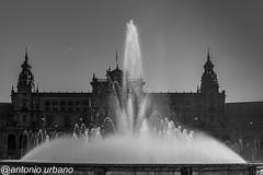 El agua, fuente y  punto central de la plaza, y de la vida. (@antonio urbano) Tags: plazadeespañasevilla sevilla plazadeespaña antoniourbano