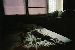 untitled by Lisa Smit - Portfolio | Blog | Prints | Instagram