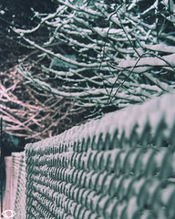 edited-53 (Achromaticz) Tags: blizzard snow winter plow government connecticut nj new york jersey adventure dangerous achromaticz eye achromatic photography street