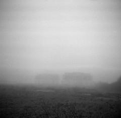 Forsaken in the mist by Rosenthal Photography - Zeiss Ikon Nettar 518/16 / Novar Anastigmat 75mm/4.5 / Rollei RPX 400 / Rodinal 1+50/20°/21min