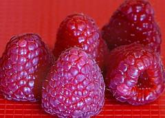 "Week 8 - 2018 ""Fruit""  Who Knew! (Sandi (VERY busy lady)) Tags: wk8 cc fruit soft red macro closeup raspberries"