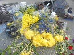 262 (en-ri) Tags: fiori flowers giallo rosso blu foglie leaves sony sonysti mazzo bouquet rose roses
