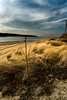 DSC03335_Long Island Winter Afternoon - Explore 2/26/18 (yogagi) Tags: harrytappenbeach longisland newyorkstate beach ocean view landscape afternoon sky clouds grass color adobecameraraw photoshopcc northshore