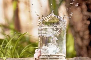 61/365 : Splash!