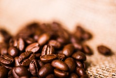 Brown roasted coffee beans (sector71) Tags: agriculture arabic aroma aromatic backdrop background bean beverage black breakfast brown burlap cafe caffeine cappuccino closeup coffe coffee color crop dark drink energy espresso flavor food freshness gourmet grain group heap hot image ingredient isolated macro mocha morning natural nobody roast roasted scented seed space textile texture textured white