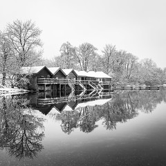 a crisp winter day (hjuengst) Tags: winter winterbeauty snow cold kalt reflection reflektionen tree lake ammersee stegen blackandwhite