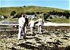 1982 - Environs of Oban and Loch Linnhe (bellrockman2011) Tags: argyll argyllshire oban benderloch lochs linnhe lorne macdougall appin creran etive lismore bencruachan awe hydro castlestalker campbell bonawe ardchattanpriory