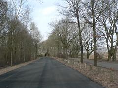 on the roads of Provinz Groningen NL (achatphoenix) Tags: niederlande nl provinzgroningen netherlands ontheroadagain ontour enroute enpassant street whiledriving märz march rural