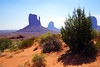 West Mitten & East Mitten, Monument Valley, USA (Andrey Sulitskiy) Tags: usa arizona monumentvalley
