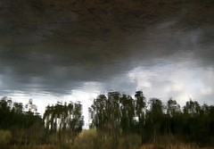 Up In The Depths (andressolo) Tags: reflection reflections reflect reflected reflejos reflejo ripples lake dam clouds cloudy tree trees distortions distortion distorted dark nature water agua