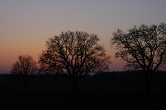 Landschaft (petra.wruck) Tags: landschaft landschaften landscape landscapes himmelheaven sky