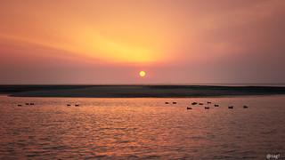 Sunset 愛媛 松前町 重信川河口1 20 2018