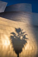 Disney Hall Palm (RyanLunaPhotography) Tags: palm los angeles socal la disney concert hall
