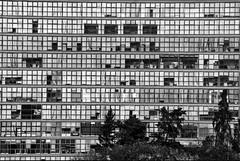Geometría universitaria (Momoztla) Tags: mexico momoztla unam cdmx universidad edificio cuadros ritmo ventanas vidrio