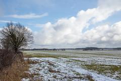 IMG_6754 (mollyblobs) Tags: cambridgeshire castor location unitedkingdom arable snow