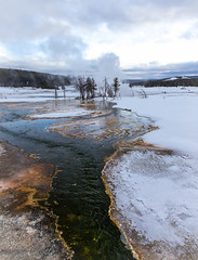 A Leading Line (maureen.elliott) Tags: landscape winter geothermalareas water pool hotspring trees mist steam yellowstonenationalpark wyoming outdoors nature