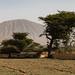 IMG_5050 Ethiopia
