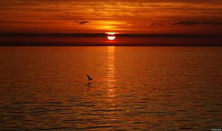 Patraikos bay at sunset