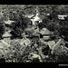 Photograph by Oskar Speck depicting a bird's eye view of a village