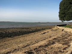 The shore at Shotley Gate (JonCombe) Tags: coastwalk193 suffolk stourandorwellwalk coast coastwalk orwell