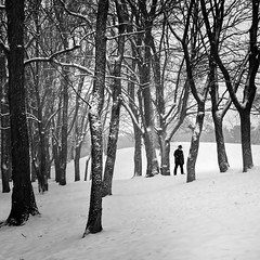 between the trees (heinzkren) Tags: perchtoldsdorf austria wald people schwarzweis blackandwhite bw sw monochrome snow schnee winter canon powershot man mann person natur landschaft landscape street streetphptography park nature stimmung mood