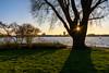 Starburst over the beautiful Alster (Milad DG) Tags: starburst alster aussenalster hamburg germany deutschland hh lake river tree boat hansestadthamburg sun lawn wiese