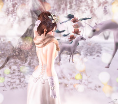 Younger Now (Chickadee Tremor) Tags: empyreanforge foxes kustom9 lode luanesmagicalworld mmc mudskin narcisse slc swallow truth avatar sl secondlife unicorn