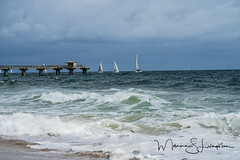 Angry weather (Maxine Livingston) Tags: atlanticblvdbeach ftlauderdalebeach sanddunes