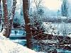 Radau Bad Harzburg (projektzwo77) Tags: harzburg badharzburg radau winter bach outdoor canon80d kurpark wasser langzeitbelichtung