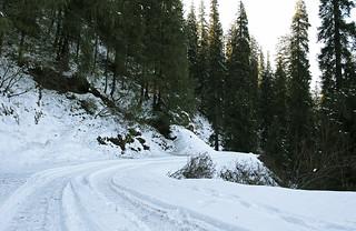 Snow covered road in Narkanda