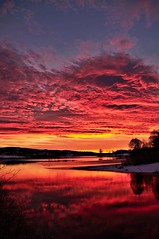 Sunset (Stefano Rugolo) Tags: stefanorugolo pentax k5 pentaxk5 smcpentaxda1855mmf3556alwr sunset verticalformat red like tree water landscape nature sky clouds sweden hälsingland reflections dynamism snow winter onfire sverige