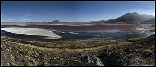 Laguna colorada, Reserva Nacional de Fauna Andina Eduardo Abaroa, Bolivia