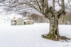 Refugio de Egiriñao (Jabi Artaraz) Tags: jabiartaraz jartaraz zb euskoflickr egiriñao winter invierno nieve haya refugio gorbea