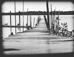 Kuching river (davidchan6) Tags: kuching sarawak malaysia river woodenbridge bridge