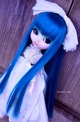 White&Blue   Pullip Prunella (·Kumo~Milk·^^) Tags: pullip aqua prunella rewigged wig rechipped eyechips eyelashes gloss obitsu doll junplanning groove stock stockoutfit