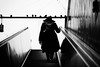 (graveur8x) Tags: woman hat candid silhouette contrast blackandwhite street streetphotography bag mobilephone stairs escalator light birds station city urban schwarzweis frankfurt germany deutschland shadow shadows underground under below winter cold boots canon canoneos6d canonef135mmf2lusm 135mm ff ffm