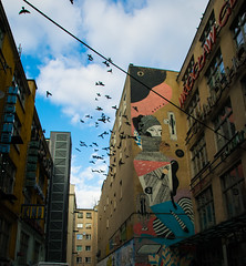 Wroclaw graffiti (Keroelv) Tags: art urbanart graffiti birds wroclaw poland nikon traveling travel lightroom europe streetphotography