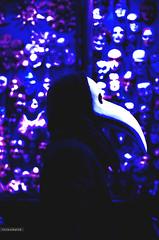 L'amour l'emporte (Crosshatchs) Tags: lamour lemporte love quote mask plague french patient arrogant rejoice believe hope faith giver corinthian masquerade crosshatch blue white doctor truth