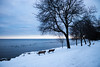Mildly Cold Sunset (Stefen Acepcion) Tags: onatrio snow tree chair canada oakville lake lakeshore white black light dark blue sky yellow sun sunset new winter january afternoon