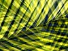 Crossed Palms (scinta1) Tags: digitalart digitaleffects photo art photography nature palm leaves lines overlap colour colourful strongcolours yellow green lattice