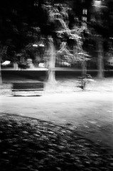 (07-31) Tags: park road tree film impressionism bw bycicle