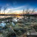 View over the floodplains of the river IJssel in Overijssel Netherlands thumbnail