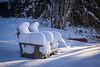 Summer Dreams (LadyBMerritt) Tags: chairs adirondack winter sun lakeside