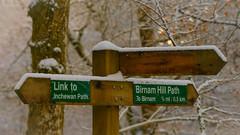 """Which way?"" (grahamrobb888) Tags: nikon nikond800 d800 nikkor afnikkor80200mm128ed bokeh birnamwood woods winter trees snow snowwoods signpost signs forest footpath forestry perthshire"