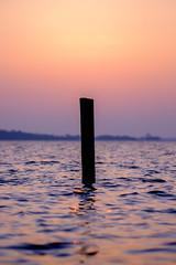 Untitled (Wouter de Bruijn) Tags: fujifilm xt1 fujinonxf90mmf2rlmwr sunrise dawn morning lake water pole post depthoffield nature outdoor veersemeer veere walcheren zeeland nederland netherlands holland dutch